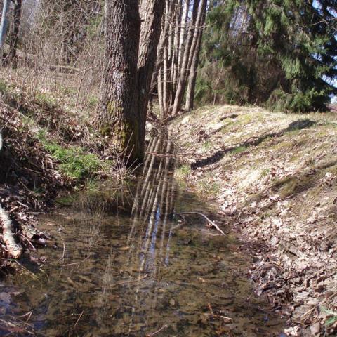 Landsbygdens avvattningssystem i ett förändrat klimat
