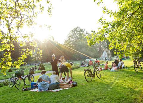 Stadsparken kan bli Sveriges mest inspirerande park!