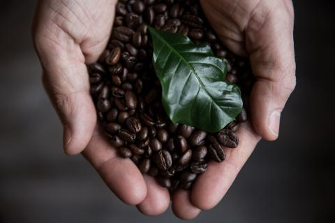 Kaffe_16okt