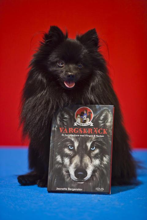 Och vinnaren av årets The Next Lassie blev – kleinspitzen Zingo
