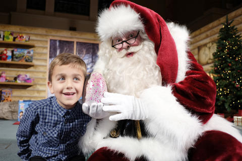 Hatchimals with Santa