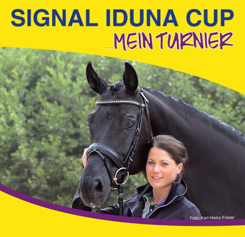 SIGNAL IDUNA CUP 2016