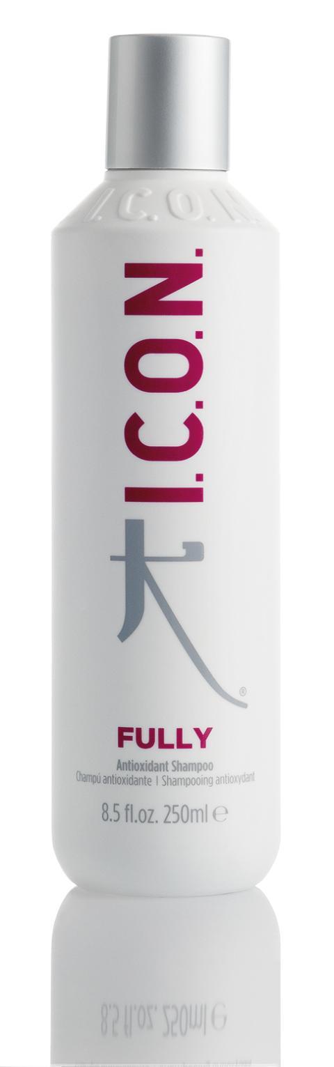 Fully - 250 ml