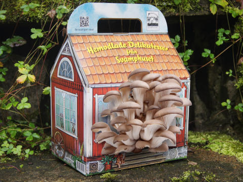 Svamphuset - Odla svamp hemma!