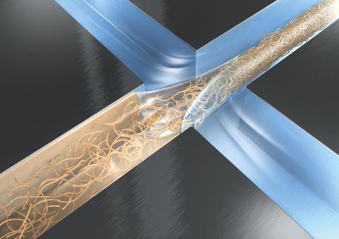 Här är en illustration som visar hur fibriller, det vill säga nanometerstora fibrer, ser ut. Bild: DESY/Eberhard Reimann.