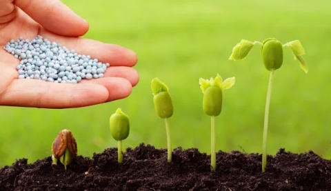 Global Bio-Pesticides Market SWOT Analysis , Benefits, Forthcoming Developments, Outlook, Research & Future Investments to 2021