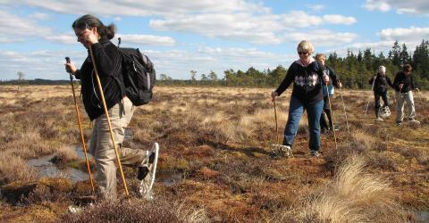 Nationalparker viktiga för Sveriges attraktionskraft, naturturismföretagare och samhälle