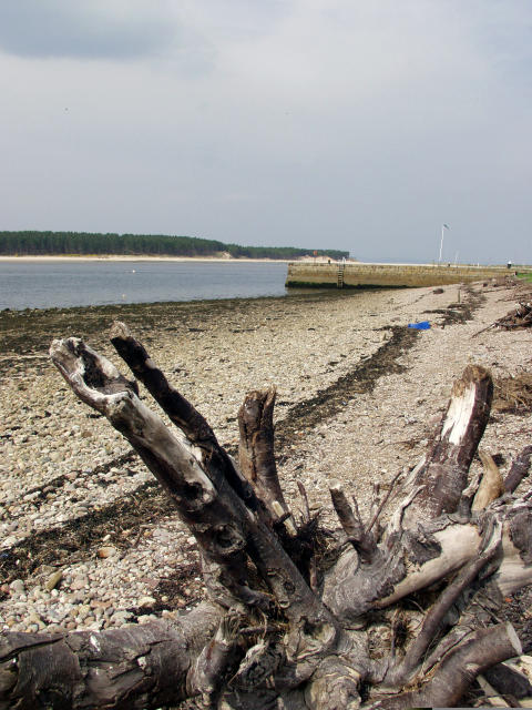 Moray More Findhorn
