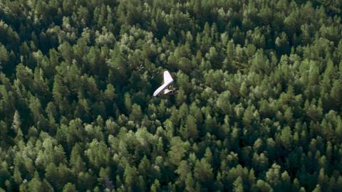 Spread Your Wings Nicolas Vanier Still010