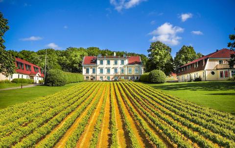 Krägga Herrgård blir Champagne-pionjärer - unik dispens ger åtråvärda namnrättigheter