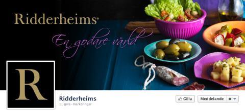Tjuvkika på Ridderheimsrapporten på Facebook
