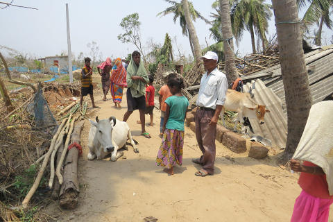 1905-WTG-Odisha-Soforthilfe-Rinder-Menschen