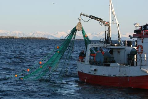 Åpent møte om bærekraftig fiskeri
