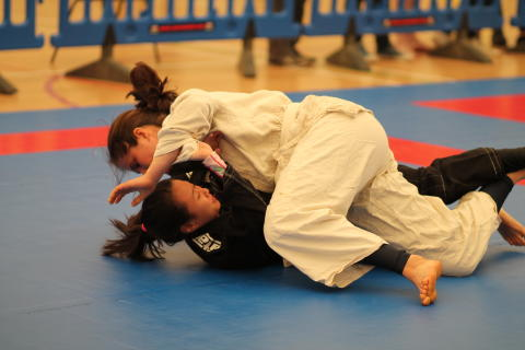 UKBJJA University Brazilian Jiu Jitsu League