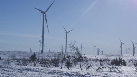VGB operation of wind power plants in cold climate