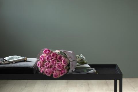 Rosa sløyfe-roser