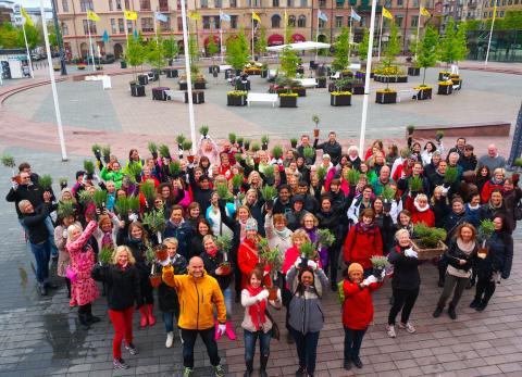 Yves Rocher planterar 2 miljoner träd 2014