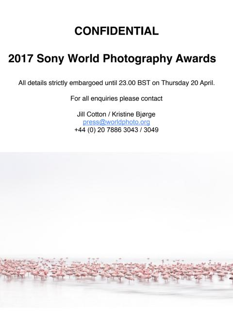 Sony World Photography Awards 2017 Winner