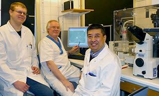 Stamceller i kombination med cochleaimplantat ger nytt hopp för döva