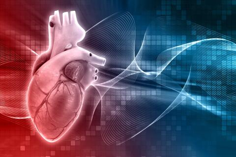 Cardiac Restoration Systems Market Size, Global Trends, Comprehensive Research Study, Development Status, Opportunities, Future Plans, Competitive Landscape and Growth by 2027