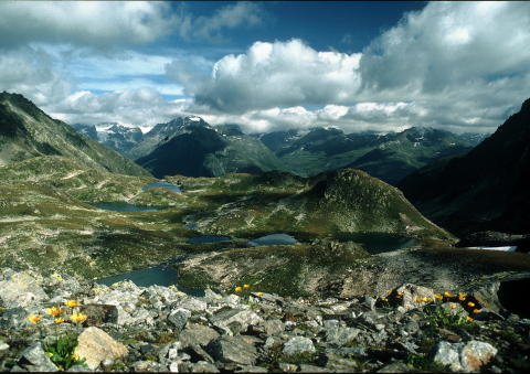 Die Macun-Seenplatte im Schweizerischen Nationalpark