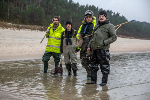 The Hunt for Baltic Gold
