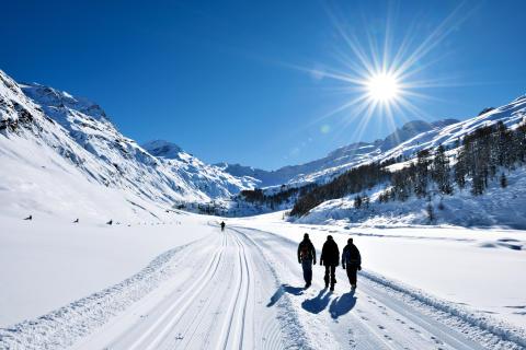 Neu: Perfekte Routen für Winteraktivitäten auf SchweizMobil