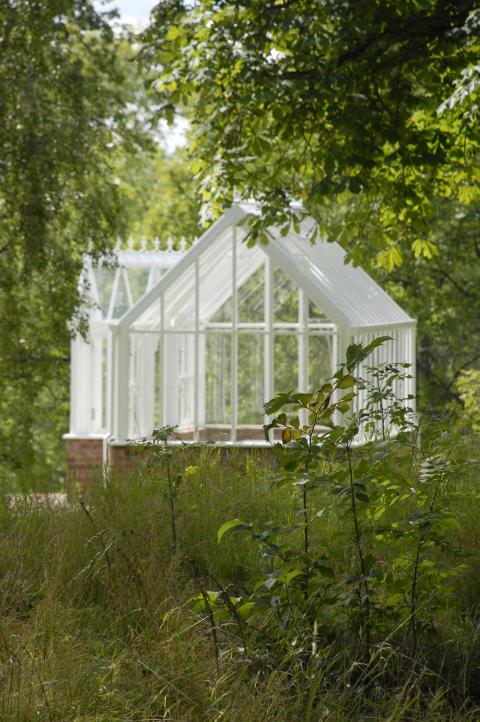 engelskt växthus och svensk sommar