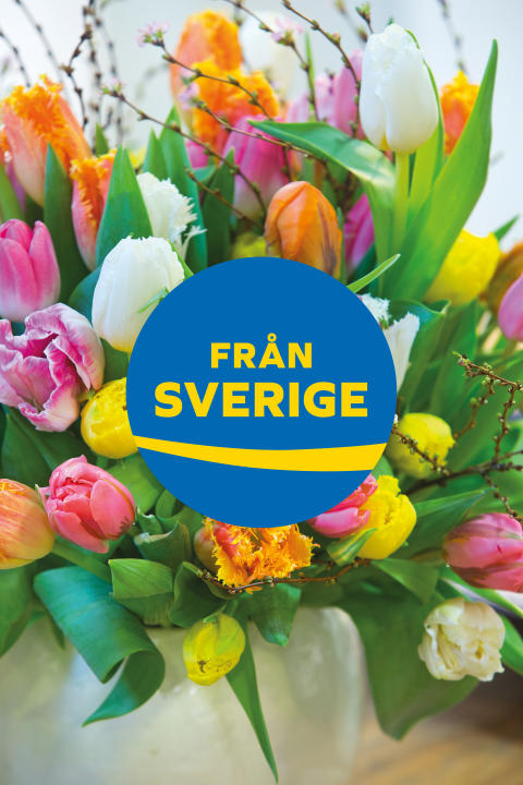 Bukett med svenska tulpaner för Tulpanens Dag, med märket Från Sverige