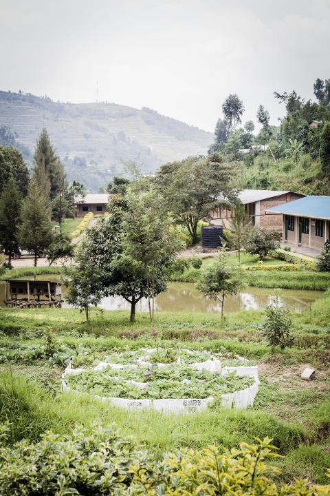 Köksträdgård livsviktigt inslag på skolorna