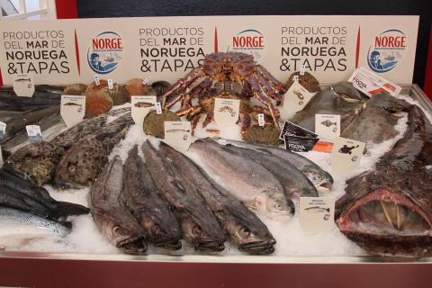 Norge Pinchos Valladolid