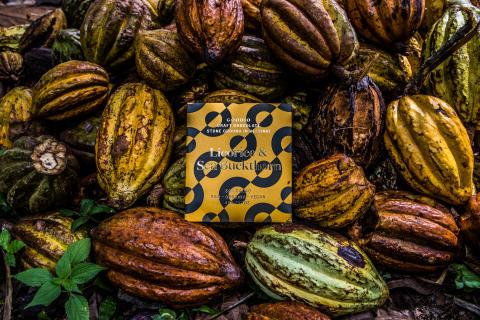 Ekologisk rawchoklad med havtorn och lakrits