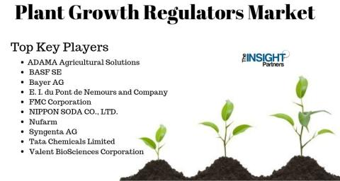 Latest Research on Plant Growth Regulators Market and Forecast by 2027 with Top Key Players Nufarm, Syngenta AG, Tata Chemicals Limited, Valent BioSciences Corporation and Others