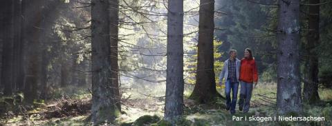 Par i skogen, © TourismusMarketing Niedersachsen GmbH / Peter Hamel