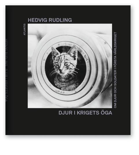 Djur i krigets öga av Hedvig Rudling