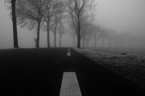 Kørsel i tåge