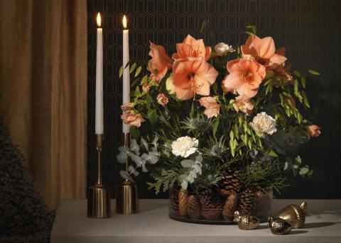 Julens blommor är trendigt aprikosa