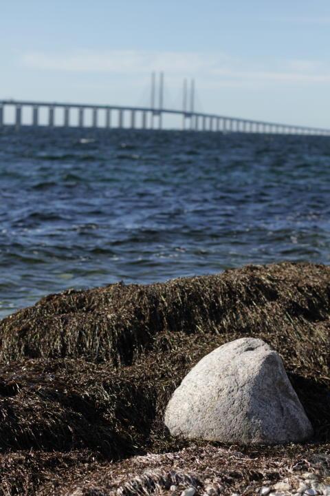A lovely view of the Öresund Bridge at Mynewsday Malmö, Sweden