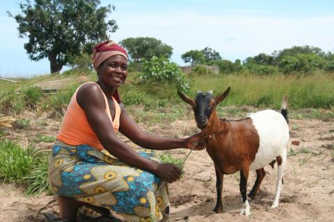 Hur en get från ActionAid gör nytta i fält