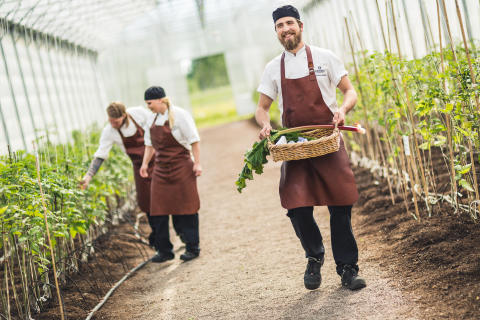 Promenadavstånd från växthusen till köket