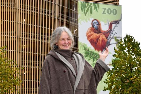 PI-Zoo-DARWINEUM-86-2017_WIRO-Wandgemälde_Orangs_Ina Wilken Künstlerin_Zoo Rostock_Kloock