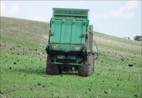 SVU-rapport 2014-12: Organiska miljögifter i sockerbetor och blast odlade på mark gödslad med kommunalt avloppsslam (avlopp och miljö)