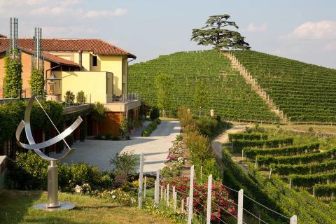 Cordero di Montezemolo vingårdar runt egendomen Monfaletto
