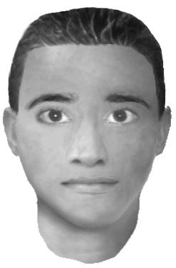 E-Fit issued in original appeal