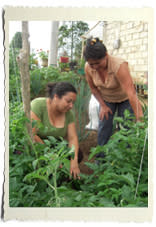 Colombia: Vad betyder markfrågor för freden?