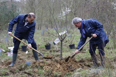 Panalpina France plante 2 036 arbres pour compenser ses émissions de CO2, en collaboration avec Reforest Action
