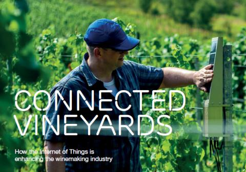 Ericsson, MyOmega, Intel and Telenor Connexion bring efficiency to winemakers