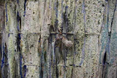 TereseWilliamfamiglia close-up