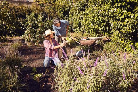 Undgå overbelastning i haven