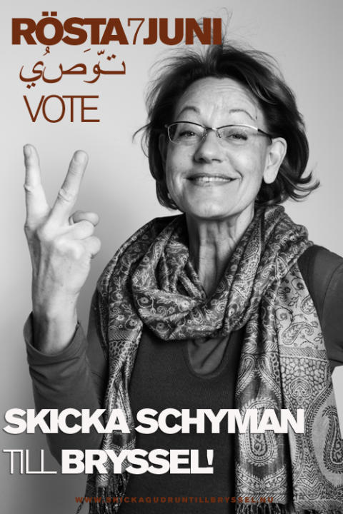 Schyman håller EU-valmöten i Uppsala och Norrköping
